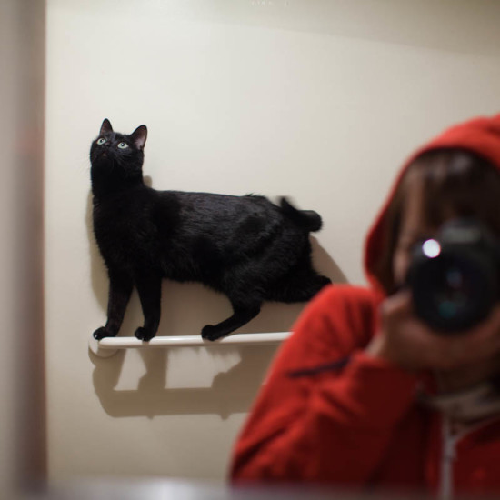 Self portrait with cat.