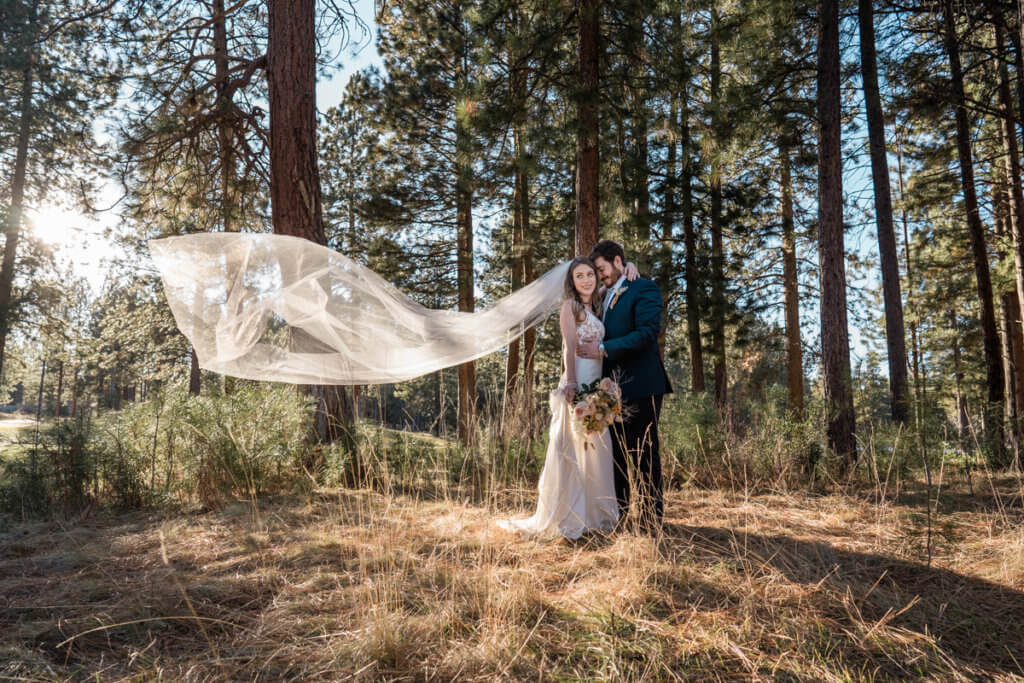 Pine trees and wedding couple. Bride's veil blowing in the wind.