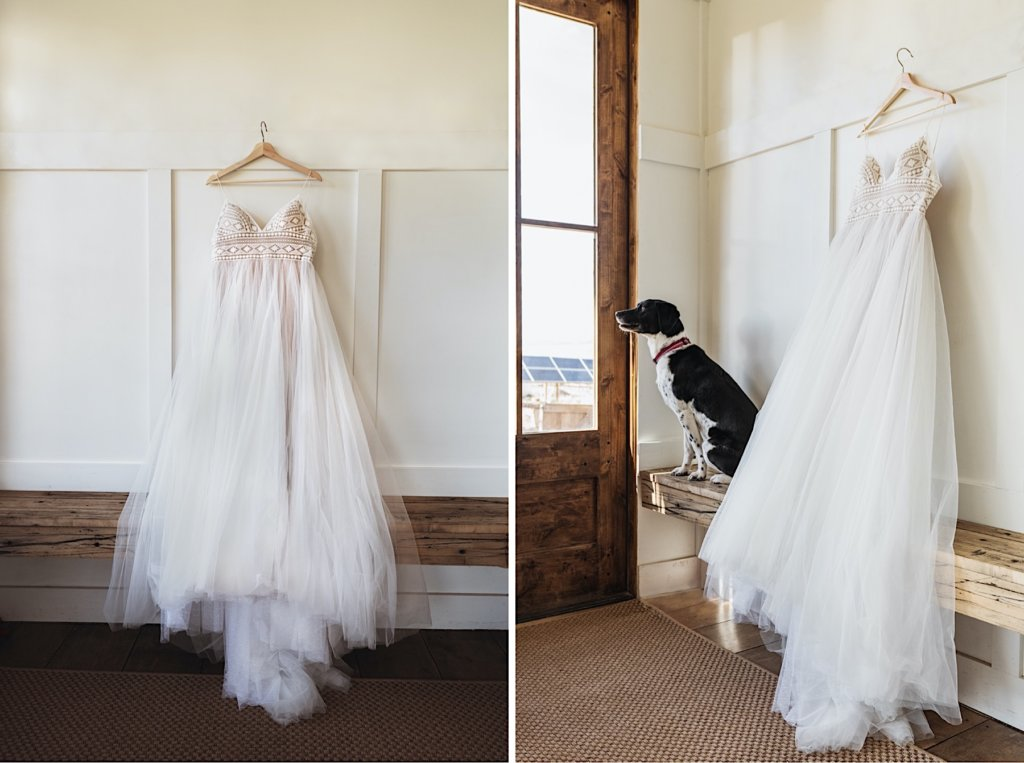 Picture of the dress. Second picture with the dress and dog.