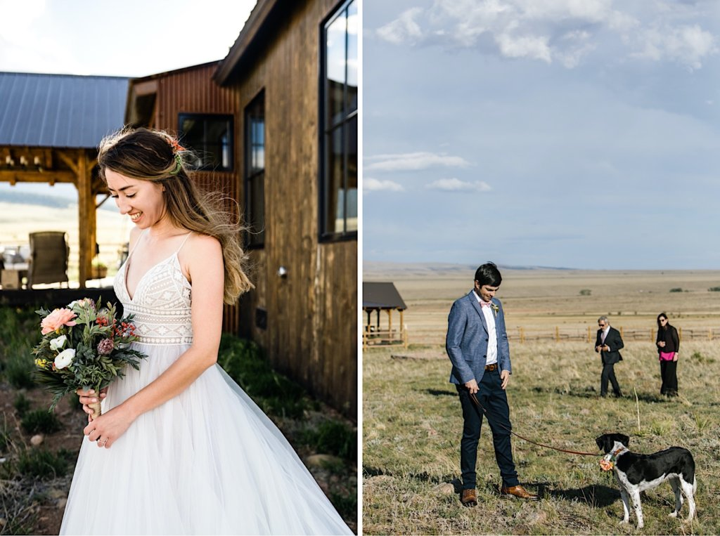 Picture of the bride. Picture of the groom and dog.