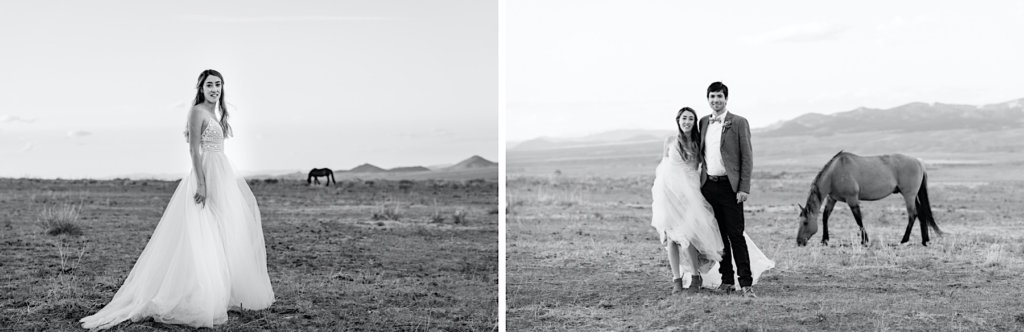 Black and white images; one of the couple with a horse in the distance and one photo of the bride.